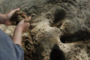 砂場で泥団子を作っている画像